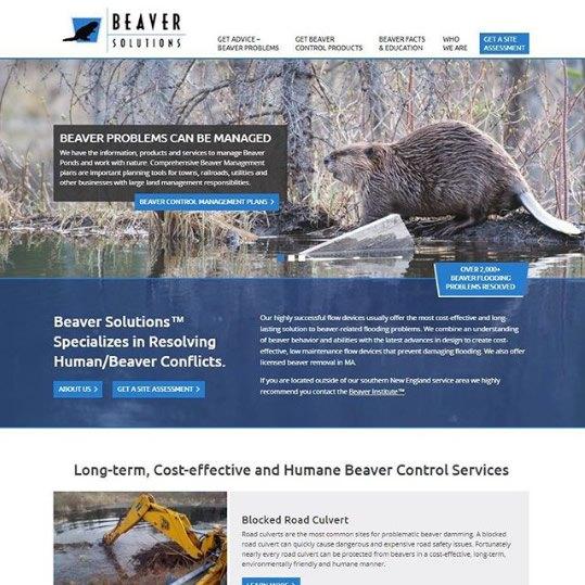 Beaver Solutions - Southampton, MA